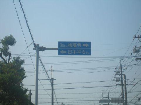 shizuoka4.jpg